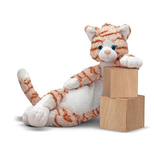 munchkin cat health issues